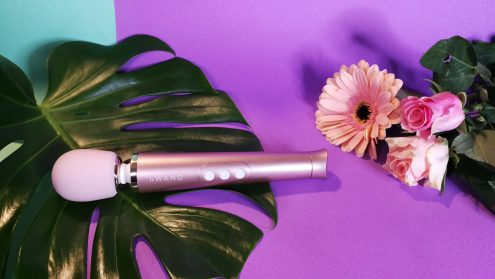 IMG 20190108 162859 495x279 - Sextoy review by Tess: Le Wand Petite Rechargeable Massager