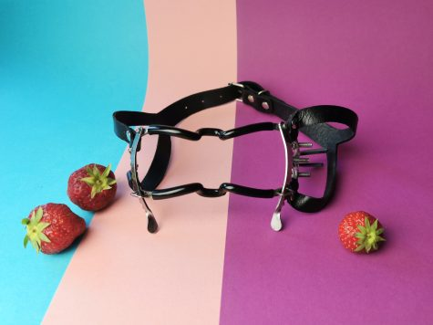 IMG 20190711 174911 475x356 - Review by Tess: MEO Whitehead Rachet Style Jennings Mouth Gag