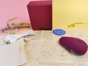 De inhoud van de verpakking. De pom, een sticker, de gebruiksaanwijzing, het oplaadkabeltje en het bewaarzakje