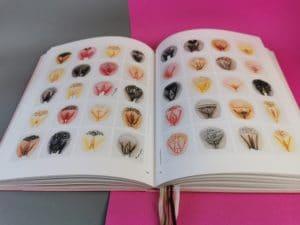 Twee pagina's met kleine tekeningen van the vulva gallery