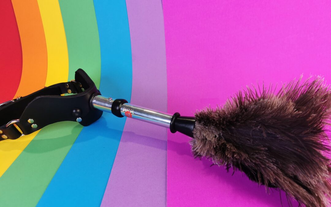 MEO Humiliator Mouth Gag System + Feather Duster Attachment